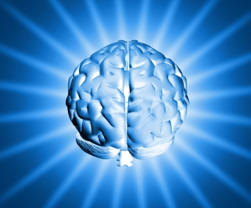 brain shiny
