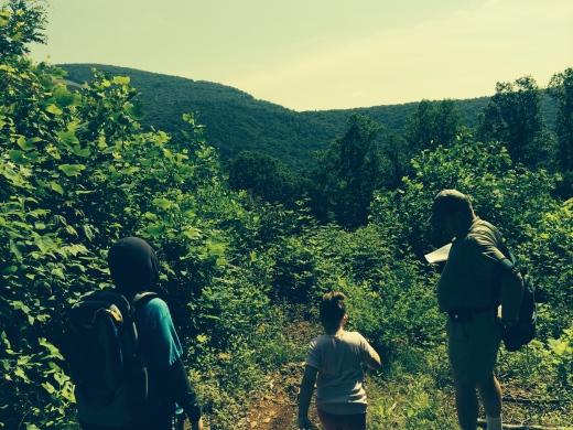 A mountain hike near Boone, NC in June 2014