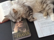 Silver is laying over Bounds' name. But this is a collection of five books by E.M. Bounds on prayer. LOVE it!
